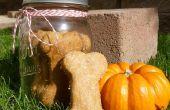 Citrouille & traite de chien aromatisé au beurre d'arachides