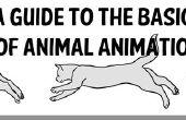 Un Guide pour les bases de l'Animation animale