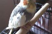Jouet du perroquet facile de Triominos recyclé