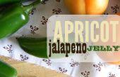 Confiture d'abricot jalapeno + freebie tags