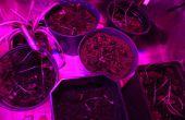 24 Watt LED élèvent la lumière avec réglage de la luminosité