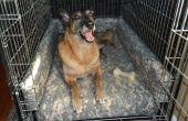Super confortable lit pour chien chenil