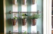 Pendaison d'intérieur jardin d'herbes aromatiques