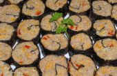 Morsures (faux Sushi) de boeuf