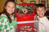 Comment construire un bernard-l'ermite (ou autre petite bestiole) Cage