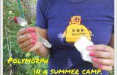 Métamorphose dans un Camp d'été.