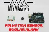 Buglar alarme avec détecteur de mouvement PIR