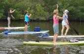 2 x 4 - palette - panneau médical : faites en un Riverboard WakeBoard Longboard ou planche de surf