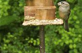 Ornement de jardin et mangeoire à oiseaux