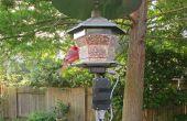 Mangeoire à oiseaux moniteur