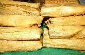 Tamales ~ Tradition du sud-ouest de vacances !