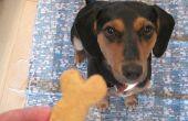 Biscuits pour chiens bricolage
