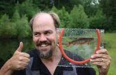 Cadre de poissons pour prendre des photographies de poissons vivants des micro-