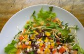 Le système sain salade