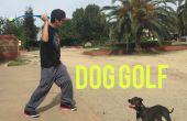 Golf de chien