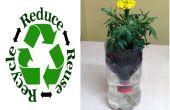 Recyclé bouteille auto arrosage culture hydroponique