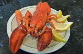 Été de nourriture : le commencement (homard)