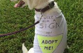 Non et coudre recyclé chien T-shirt