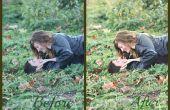 Avant et après le montage d'une simple image dans Photoshop