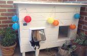 Maison solaire alimenté chat