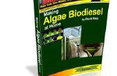 Faire à la maison des algues Biodiesel