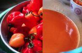 Sauce Sriracha Habanero maison