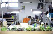 Automatisé de jardin