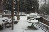 SNOWCONES fait maison ! (EN TOUT TEMPS UN AN!)