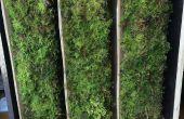 Arduino alimenté Moss & solaire Facade élément