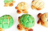Pain tortue : Tortuga Conchas