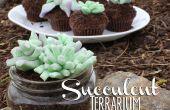 Comestibles Terrarium de succulents petits gâteaux !