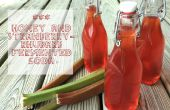 Miel & fraise-rhubarbe fermenté Soda