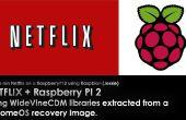 Comment à nativly lance Netflix sur un raspbery PI2