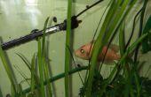 Comment faire un système Wi-Fi qui contrôlent votre aquarium éclairage & chauffage ?