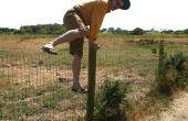 Comment sauter sur une clôture