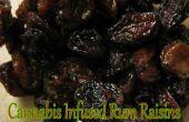 Huile de cannabis infusé raisins secs