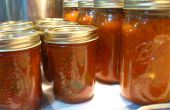 Mise en conserve tomates : Grillés Salsa