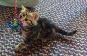 La balle de Sparkle - pour les chats