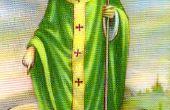 St Patricks Shamrock aint un trèfle