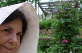 Mis à jour le 1870 SLAT BONNET, LUPUS PATIENT heureusement jardinage dans E.  TEXAS