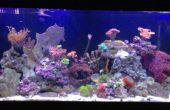 Contrôleur d'Aquarium LED sans fil avec étincelles. CORE IO à TechShop
