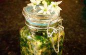 Sauvage Pesto Chunky, ail et basilic