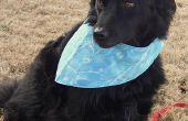 Bandana réversible de chien