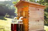 Mesurer les heures de lumière de jour - projet ruche distante