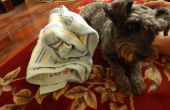 Pro Dog Towel