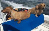 Siège de bateau Bimini Style chien (Max 25 $, 1 heure)