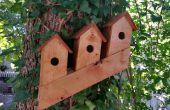 Comment construire un Condo oiseau norvégien de 2 X 4