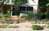 Transformer votre cour en un jardin