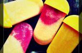 Bâtonnets de glace de fruits