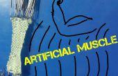 DIY muscle artificiel